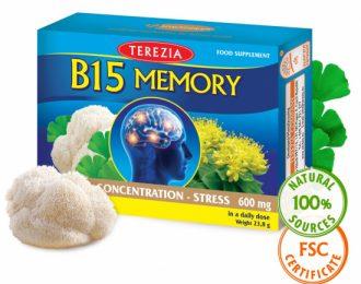 Vitamin B15 Memory